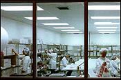 Packaging & Sterilization